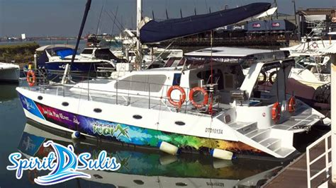 catamaran for hire durban boat cruises in durban s harbour and out to sea durban