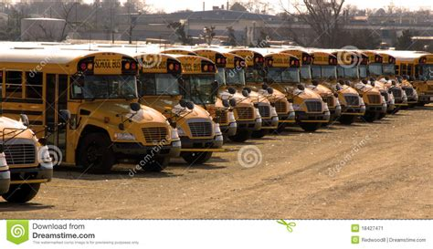 imagenes de autobuses escolares school buses parked in a long row stock image image