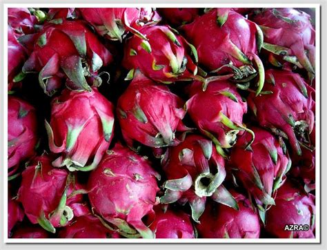 Teh Buah Naga panoramio photo of fruit buah naga