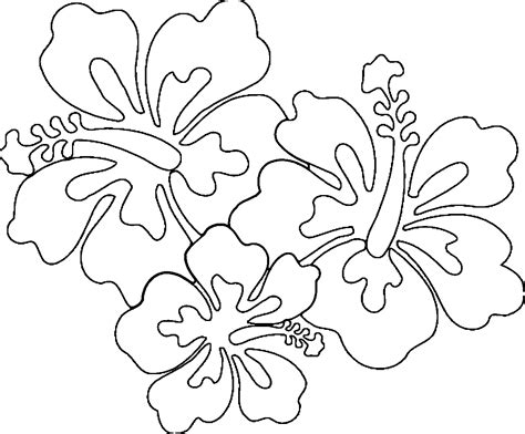 Coloring Pages Of Hawaiian Flowers hawaiian flowers coloring page coloring home