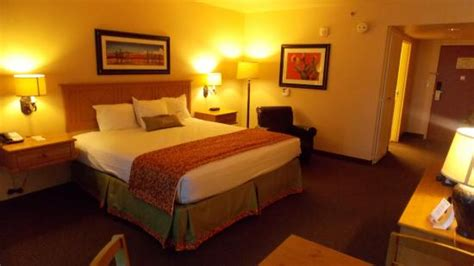 avi casino room rates the avi resort casino s pool at view from the tower river view rooms picture