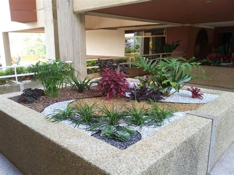 decorar jardin con plantas deserticas jardineras jardin garden plantas decoracion paisajismo