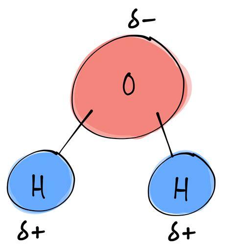 diagram of water molecule water molecule