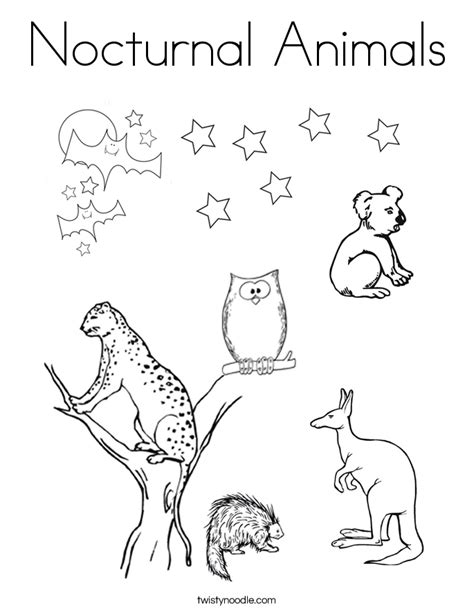 night animals coloring page nocturnal animals coloring page twisty noodle