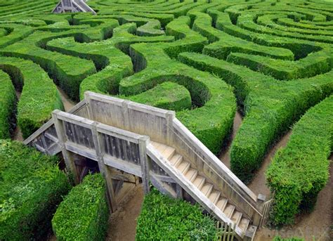 Formal Garden Layout - what is a maze with picture