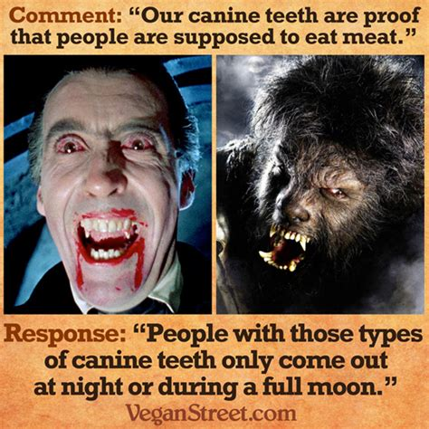 Dog Teeth Meme - canine teeth make me a meat eater resources your vegan