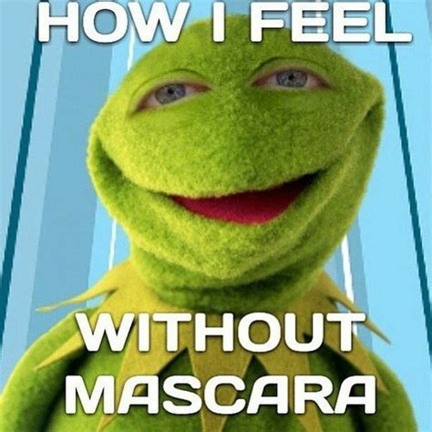 Mascara Meme - hilarious memes that sum up all our feelings about beauty