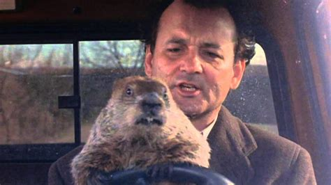 groundhog day how much time breaks how phil spent stuck in groundhog