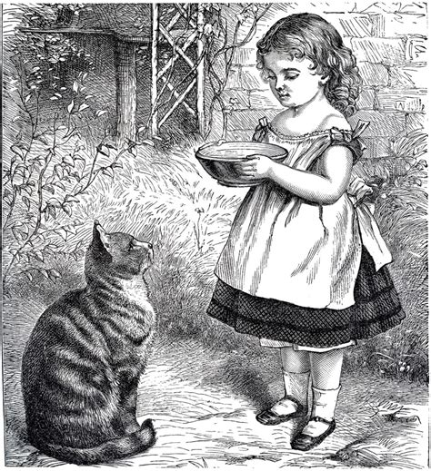 public domain  girl  cat sweet  graphics fairy