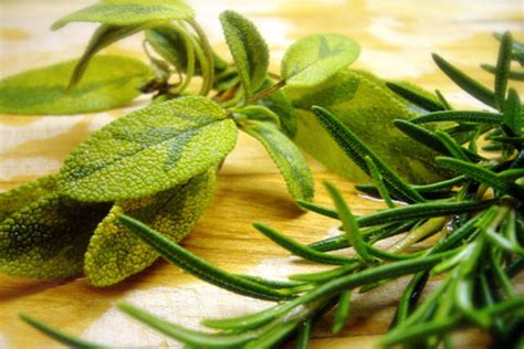 a fine herb in french is really a fines herbes adult indulgences s spice blog