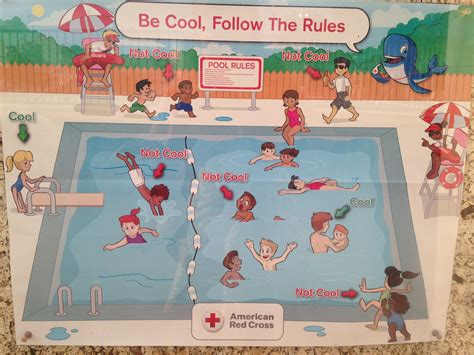 establishing house rules into another world american red cross apologises for racist swimming pool