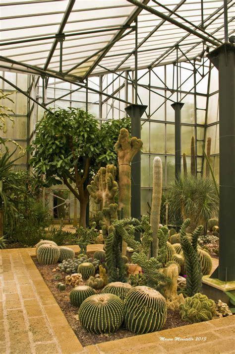 giardini di piante grasse foto giardini di piante grasse foto come sistemare un giardino