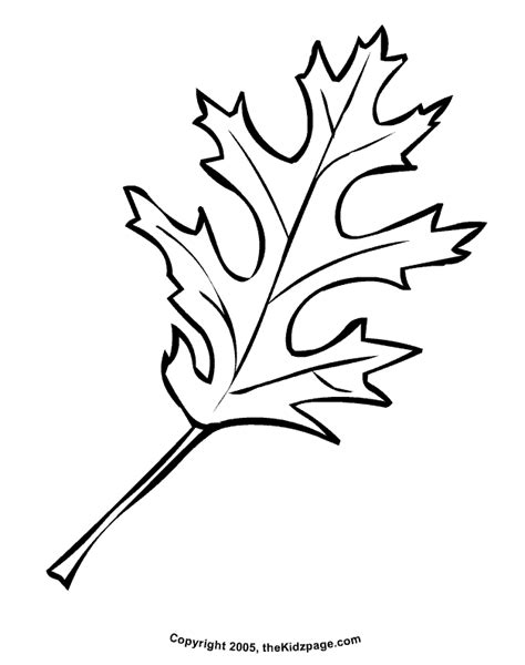 free leaf templates coloring pages