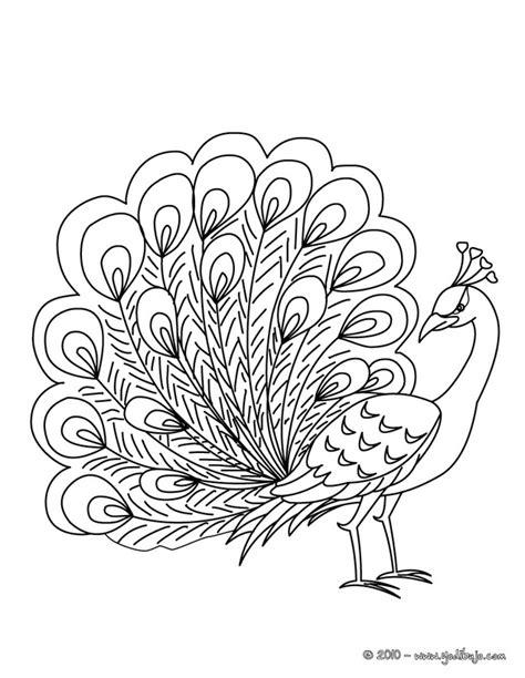 imagenes reales para colorear dibujos para colorear de animales pavo real dibujos