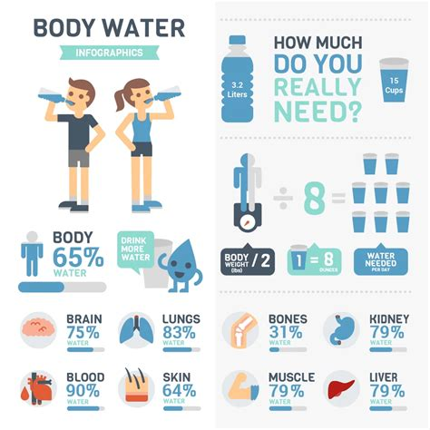 how to a each day how much water should you drink every day bibo water australia