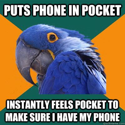 paranoid parrot says what we are all thinking weknowmemes