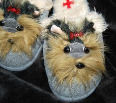 why does my yorkie in the house 1000 images about yorkie
