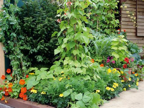 Combining Vegetables And Flowers In Your Garden Diy Vegetable Garden Planting