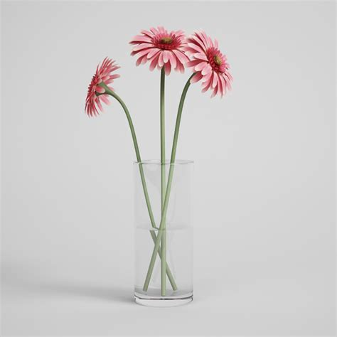 Daisies In A Vase by Pink Gerbera Daisies In Glass Vase 18 Cgaxis 3d Models