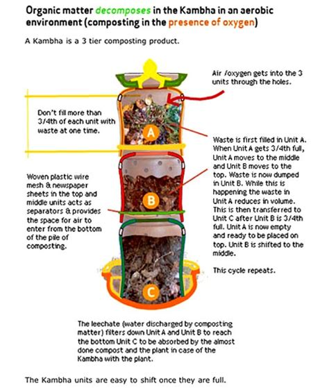 daily dump composting ceramic pots daily dump how to