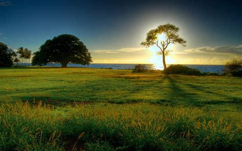 wallpaper pemandangan alam ukuran besar foto foto pemandangan alam yang spektakuler dan sangat indah