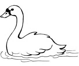 Swan Coloring Page – sketch template