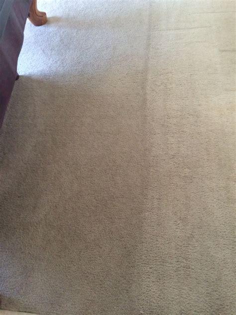 Tandys Top Shelf by Tandy S Top Shelf Carpet Tile Carpet Vidalondon