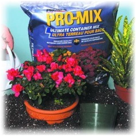 potting mix for vegetable container gardening vegetables in containers