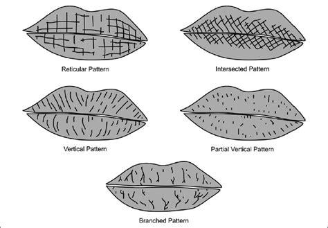 print pattern types best photos of lip print patterns types of lip print