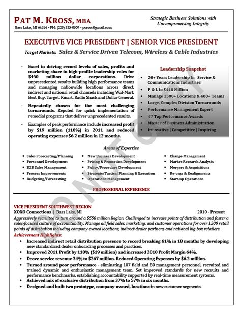 sle vp resume evp vp resume executive vice president resume sles