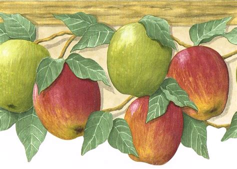 apple wallpaper kitchen 1000 images about home renovation on pinterest colors