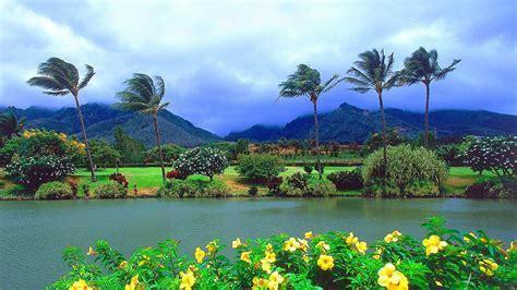 Hawaii   SAIL ART   EXCLUSIVE CRUISES