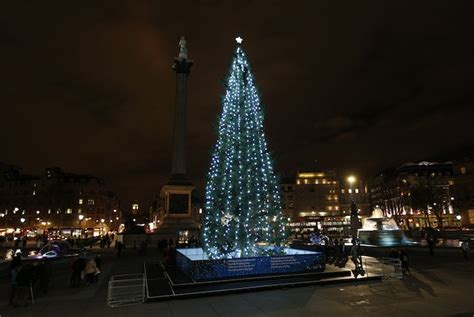 anorak the biggest christmas trees of 2012 from new
