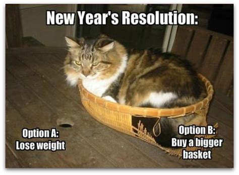 Funniest New Memes - happy new year funny memes 2016
