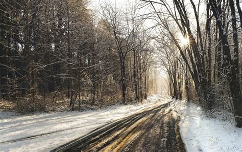 wedding background tracks forest road tracks snow wallpapers forest road tracks