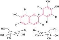 antocianine alimenti antocianine