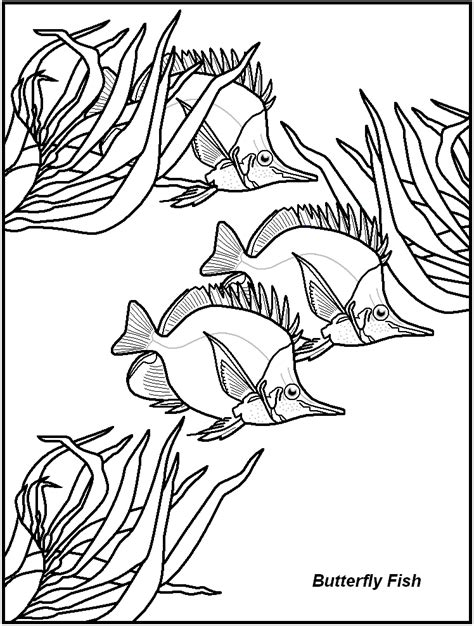 fish coloring page pdf free printable fish coloring pages great for kids