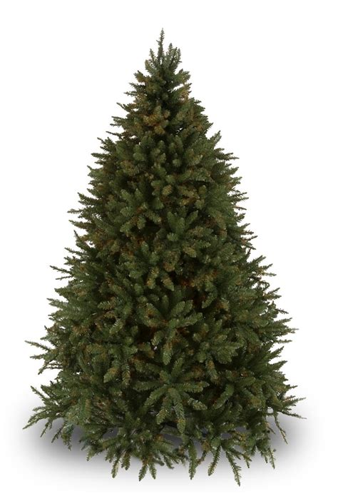 douglas fir unlit tree christmas lights etc