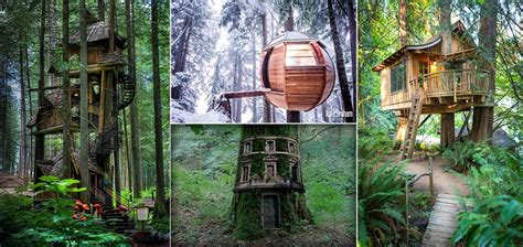 top 10 tree houses design ideas we love homedit icreatived 25 most beautiful tree houses from all over