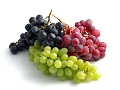 imagenes de uvas verdes y moradas las uvas medicina natural para cuidar la salud de tus