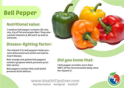 can dogs eat bell peppers bell peppers for dogs 101 can dogs eat bell peppers