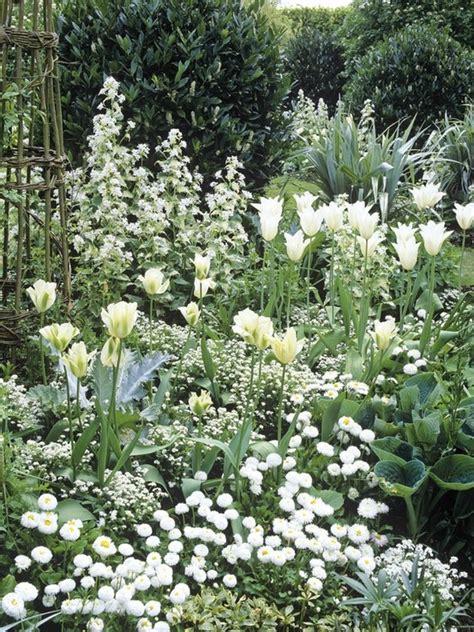 add some glow to your garden putte gardens