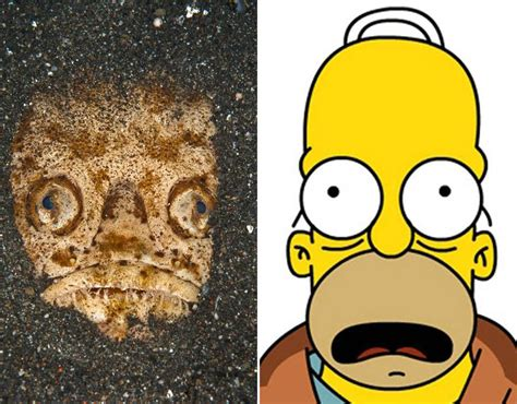 Doh On The Xbox The Simpsons Get Into Gaming by Doh Homer Has Morphed Into A Sea Creature