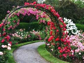 rose garden wallpapers wallpaper cave