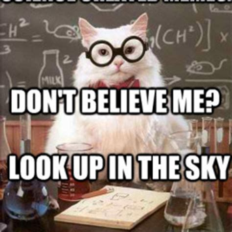 Science Cat Memes - science cat memes www pixshark com images galleries