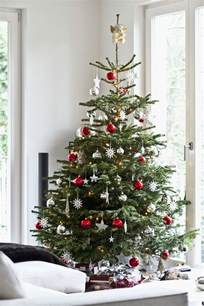 best 25 real christmas tree ideas on pinterest real