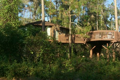 saratoga springs treehouse villas room tour walt disney world downtown disney travel guide wikitravel