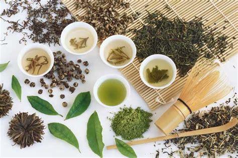 L Arte Te by Tea Sommelier L Arte Della Degustazione T 232 Spiegata