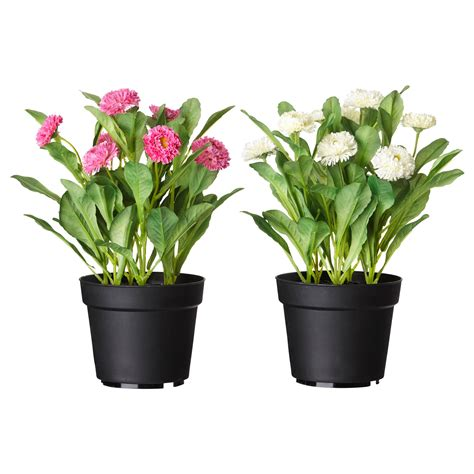 plant potters fejka artificial potted plant common daisy assorted
