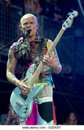 Flea Chili Peppers Bassist Loses Home In Malibu by Fleas New Bass Talkbass